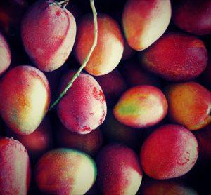 [RJ306604] (Tagtraum) 食べたことのない果物