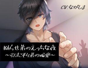 [RJ318538] (くまじろう) 拗らせ弟のえっちな夜~引きこもり弟の偏愛~